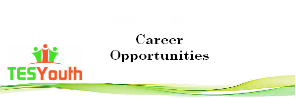 Career Opportunities, Cyber Security Audit